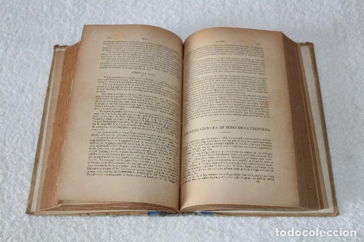 Libros antiguos: GUIA ROSETTY 1893. GUIA OFICIAL DE CÁDIZ, PUEBLOS DE LA PROVINCIA. DEPARTAMENTO MARITIMO - Foto 12 - 126197179