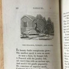 Old books - JOHN GAY FABLES (FÁBULAS) 1812 - 126199843