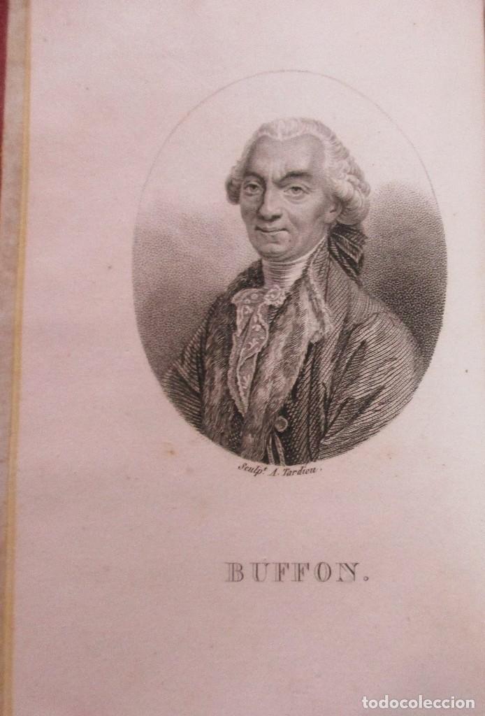 Libros antiguos: TEORÍA DE LA TIERRA. OBRAS DE BUFFON AUMENTADAS POR CUVIER. 6 TOMOS, 3 VOLÚMENES.1832. PIEL.COMPLETO - Foto 2 - 126260819