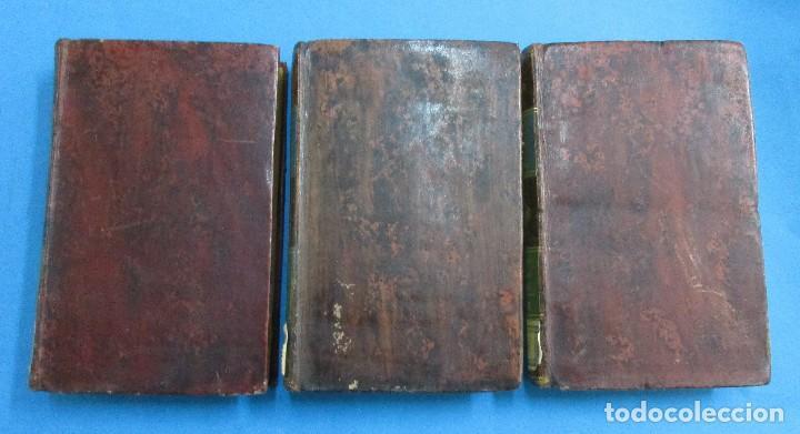 Libros antiguos: TEORÍA DE LA TIERRA. OBRAS DE BUFFON AUMENTADAS POR CUVIER. 6 TOMOS, 3 VOLÚMENES.1832. PIEL.COMPLETO - Foto 9 - 126260819