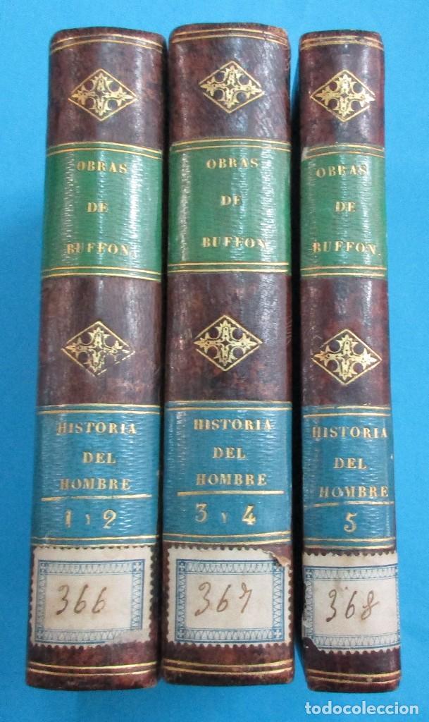 OBRAS DE BUFFON AUMENTADAS POR CUVIER.HISTORIA DEL HOMBRE. 5 TOMOS. 3 VOLÚMENES.1834. COMPLETO. PIEL (Libros Antiguos, Raros y Curiosos - Ciencias, Manuales y Oficios - Otros)