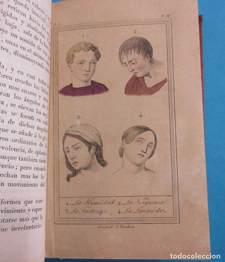 Libros antiguos: OBRAS DE BUFFON AUMENTADAS POR CUVIER.HISTORIA DEL HOMBRE. 5 TOMOS. 3 VOLÚMENES.1834. COMPLETO. PIEL - Foto 10 - 126268923