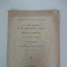 Libros antiguos: LA CICLOPOYESIS EN EL ORGANISMO ANIMAL - DR JOSÉ GIRAL Y PEREIRA - AÑO 1935. Lote 126358631