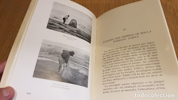 Libros antiguos: LA PESCA A CATALUNYA / EMERENCIÀ ROIG / EDITORIAL BARCINO - 1927 / BUENA CALIDAD. - Foto 5 - 127906243