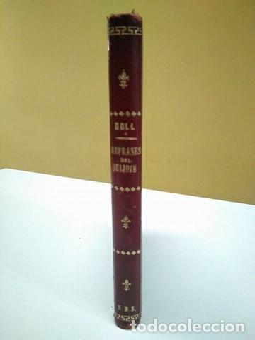 LOS REFRANES DEL QUIJOTE. JOSÉ COLL Y VEHÍ. 1ª EDICIÓN 1874 (Libros Antiguos, Raros y Curiosos - Literatura - Otros)