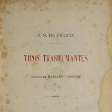 Libros antiguos: TIPOS TRASHUMANTES. - PEREDA, J. M. DE. - BARCELONA, 1897.. Lote 123228655