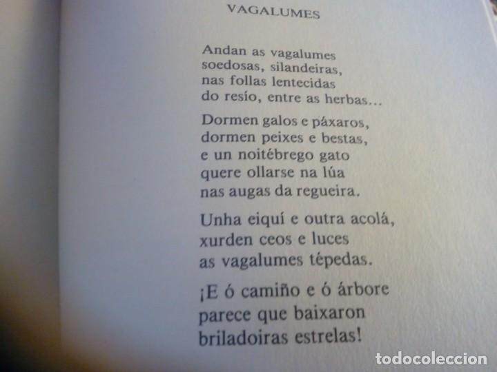 Libros antiguos: Viaxe ó país dos contos e da poesía Pura e Dora Vázquez Caixa Ourense - Foto 4 - 134024686
