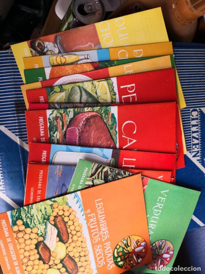 LOTE 13 PROGRAMAS DE EDUCACION EN ALIMENTACION Y NUTRICION -GOBIERNO ESPAÑOL-UNICEF-FAO- AÑOS 60/70 (Libros Antiguos, Raros y Curiosos - Cocina y Gastronomía)