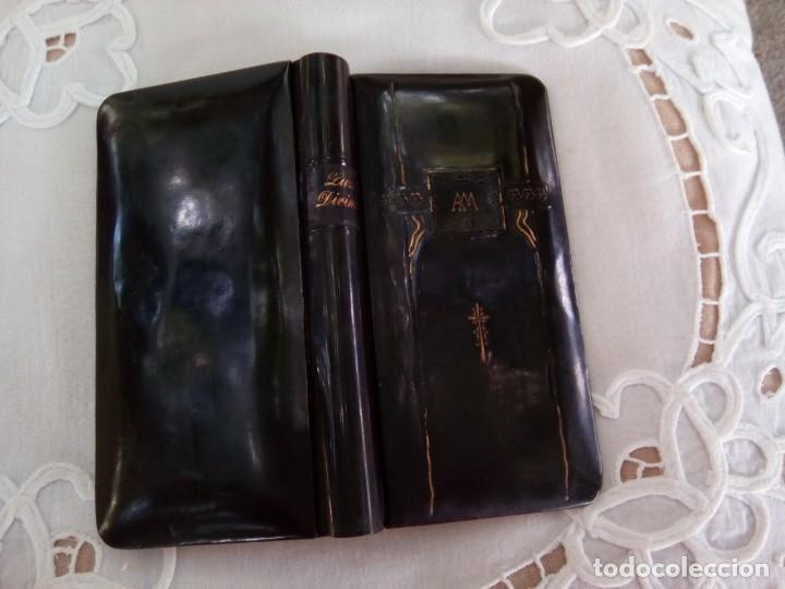 *. LUZ DIVINA .1911. (RF:P38/E) (Libros Antiguos, Raros y Curiosos - Bellas artes, ocio y coleccionismo - Otros)