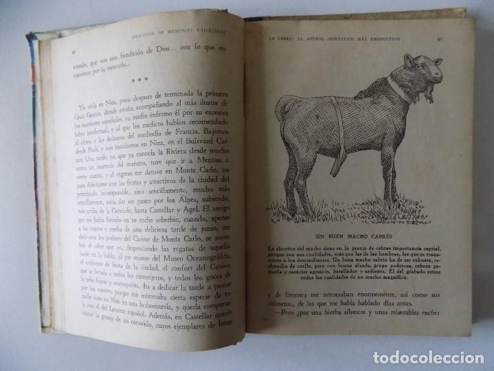 Libros antiguos: LIBRERIA GHOTICA. FERNANDO ALBURQUERQUE. LA CABRA.EL ANIMAL DOMÉSTICO MÁS PRODUCTIVO.1946.ILUSTRADO - Foto 2 - 136018810