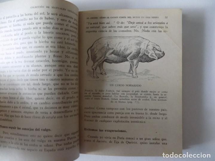 Libros antiguos: LIBRERIA GHOTICA. FERNANDO ALBURQUERQUE. EL CERDO. LA RIQUEZA EN LA MANO.1958. ILUSTRADO. - Foto 2 - 136740062