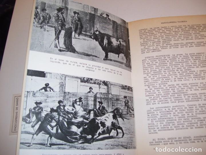 Libros antiguos: ENCICLOPEDIA TAURINA!!! POR J. SILVA ARAMBURU * PEPE ALEGRÍAS*LEER DESCRIPCIÓN!!! - Foto 4 - 137568126