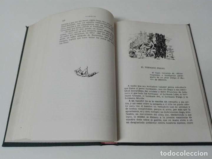 Libros antiguos: Nimrud narraciones y hechos de caza firmado y dedicado por el autor - Foto 8 - 138823714