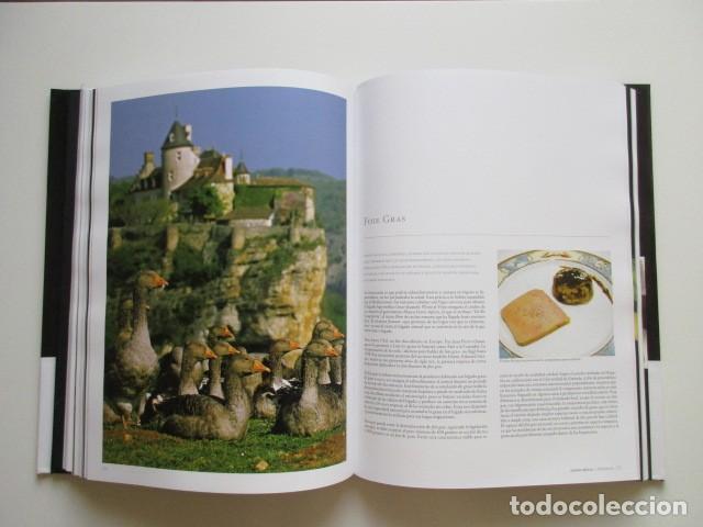 Libros antiguos: SUMMA DELECTA (SUPREMO DELEITE), LIBRO DE LUJO PARA GOURMENTS, VINOS, QUESOS, CAFÉ, DELICATESSEN - Foto 3 - 139771414