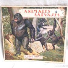 Libros antiguos: EL REINO ANIMAL PARA NIÑOS Nº 2 ANIMALES SALVAJES RAMON SOPENA AÑOS 20. Lote 140056478