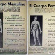 Libros antiguos: EL CUERPO MASCULINO Y EL CUERPO FEMENINO - EDITORIAL ORBIS, 1920 - COMPLETOS.. Lote 140751742