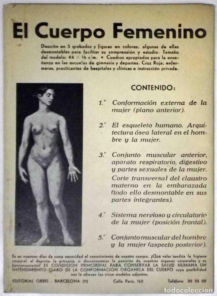 Libros antiguos: El cuerpo masculino y el cuerpo femenino - Editorial Orbis, 1920 - Completos. - Foto 9 - 140751742