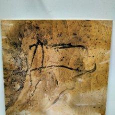 Libros antiguos: LIBRO - RIERA I ARAGO / N-7621. Lote 144926086