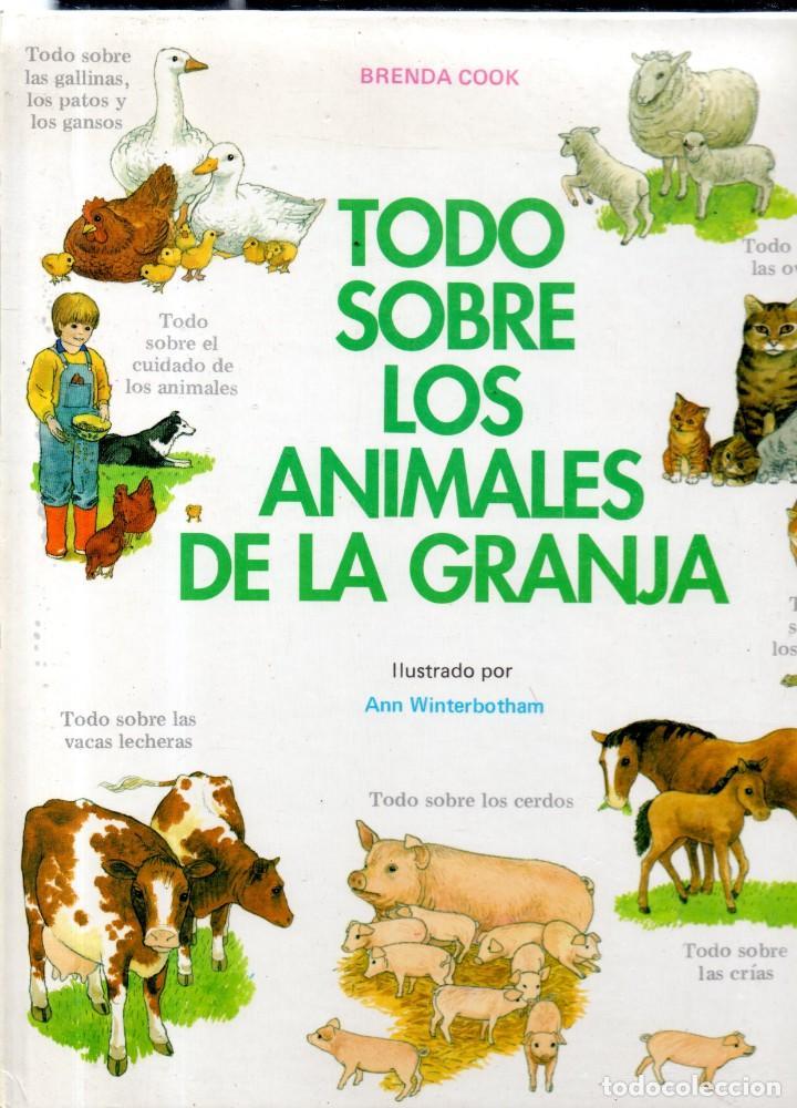 VESIV LIBRO TODO SOBRE LOS ANIMALES DE LA GRANJA DE BRENDA COOK (Libros Antiguos, Raros y Curiosos - Literatura Infantil y Juvenil - Otros)