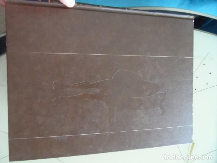 Libros antiguos: Enciclopedia Fauna de salvat editores - Foto 2 - 145341210