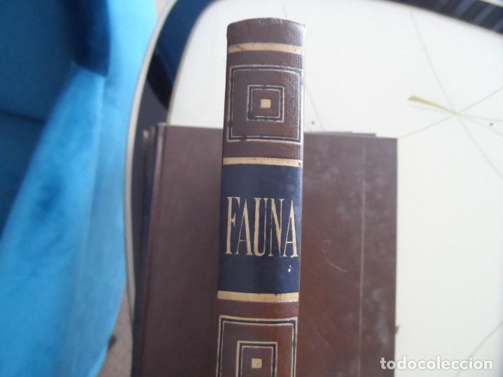 Libros antiguos: Enciclopedia Fauna de salvat editores - Foto 5 - 145341210