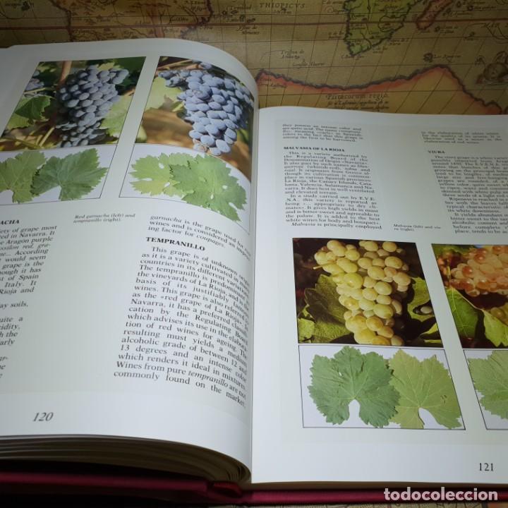 Libros antiguos: THE WINES OF NAVARRA. JORGE SAULEDA. ICEX 1989. EN INGLÉS. - Foto 9 - 147324814