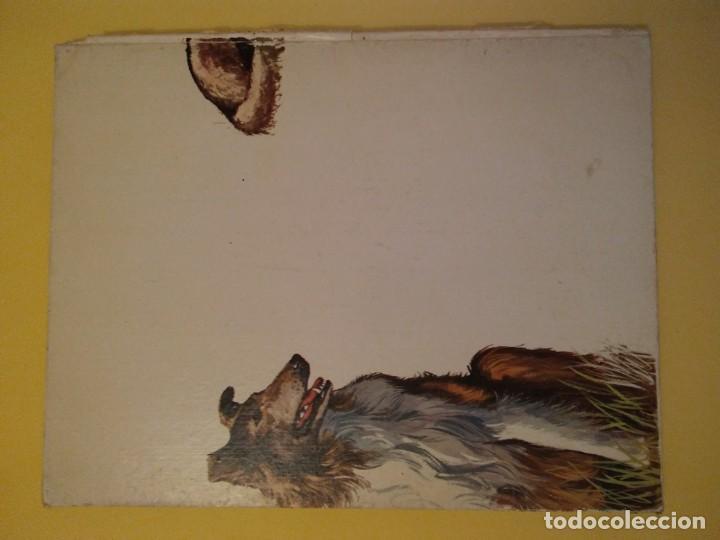 Libros antiguos: El perro nuestro amigo-Año1972-PLAZA JANES-editorial - Foto 4 - 147540694