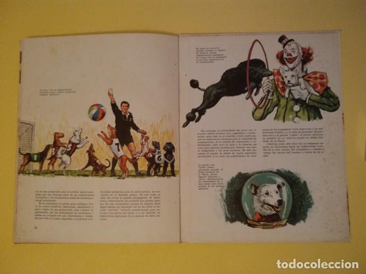 Libros antiguos: El perro nuestro amigo-Año1972-PLAZA JANES-editorial - Foto 5 - 147540694