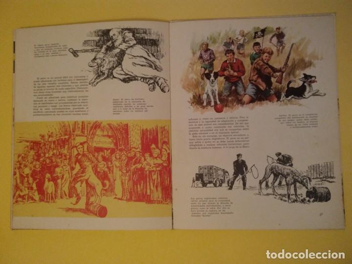 Libros antiguos: El perro nuestro amigo-Año1972-PLAZA JANES-editorial - Foto 6 - 147540694