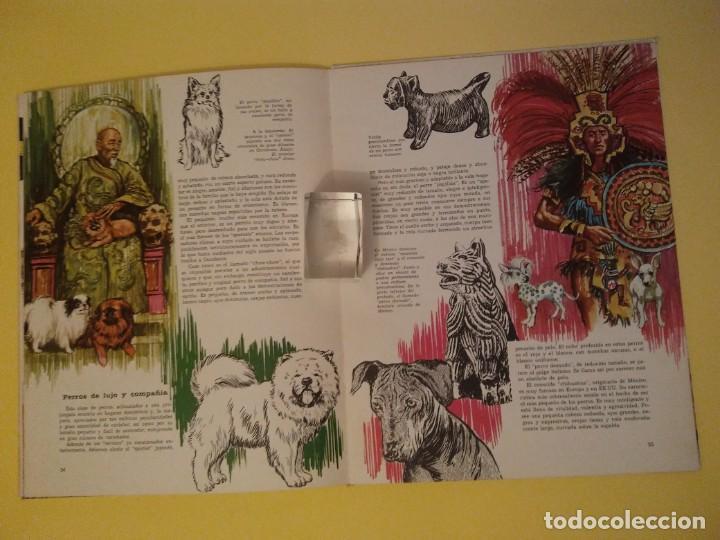 Libros antiguos: El perro nuestro amigo-Año1972-PLAZA JANES-editorial - Foto 9 - 147540694