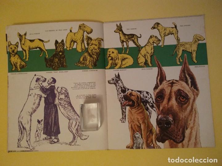 Libros antiguos: El perro nuestro amigo-Año1972-PLAZA JANES-editorial - Foto 10 - 147540694