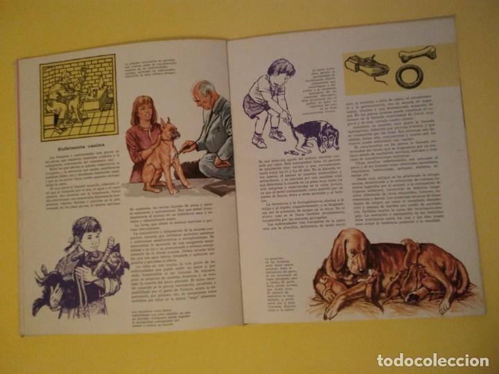 Libros antiguos: El perro nuestro amigo-Año1972-PLAZA JANES-editorial - Foto 12 - 147540694