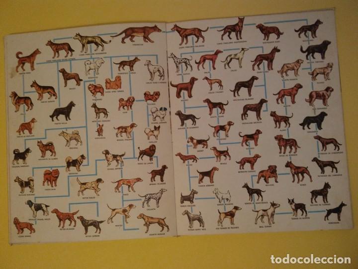 Libros antiguos: El perro nuestro amigo-Año1972-PLAZA JANES-editorial - Foto 14 - 147540694