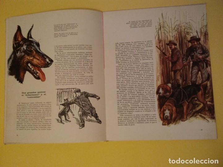 Libros antiguos: El perro nuestro amigo-Año1972-PLAZA JANES-editorial - Foto 17 - 147540694
