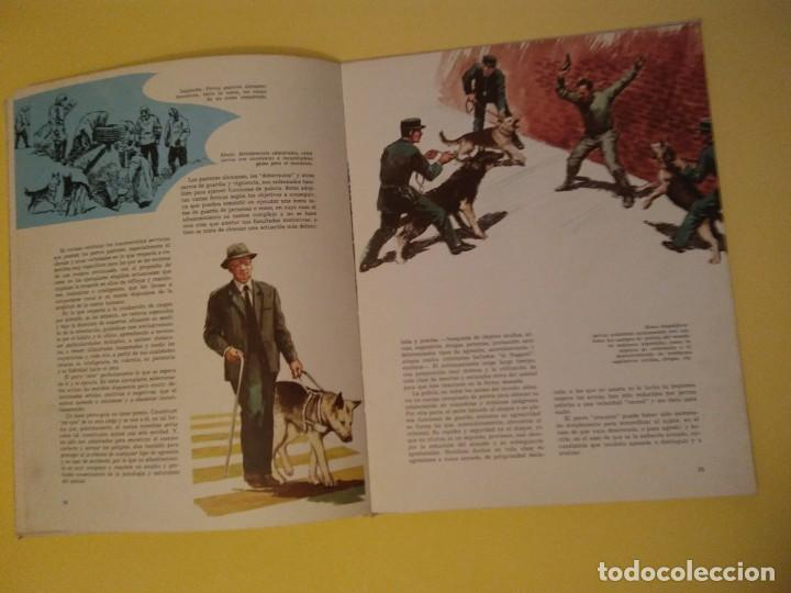 Libros antiguos: El perro nuestro amigo-Año1972-PLAZA JANES-editorial - Foto 18 - 147540694