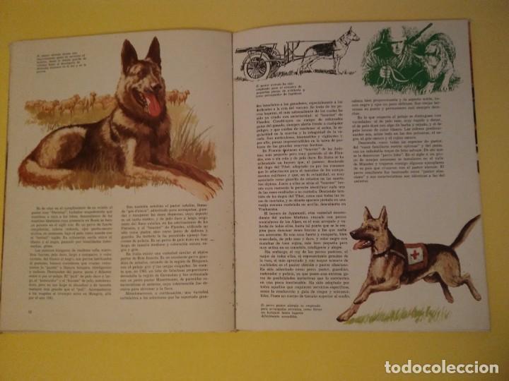 Libros antiguos: El perro nuestro amigo-Año1972-PLAZA JANES-editorial - Foto 19 - 147540694