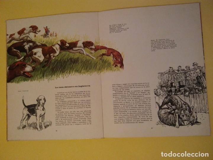 Libros antiguos: El perro nuestro amigo-Año1972-PLAZA JANES-editorial - Foto 22 - 147540694