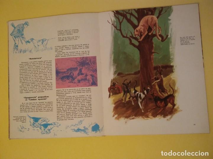 Libros antiguos: El perro nuestro amigo-Año1972-PLAZA JANES-editorial - Foto 23 - 147540694