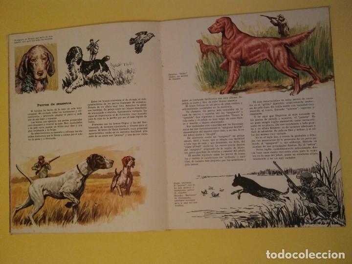 Libros antiguos: El perro nuestro amigo-Año1972-PLAZA JANES-editorial - Foto 24 - 147540694