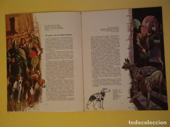 Libros antiguos: El perro nuestro amigo-Año1972-PLAZA JANES-editorial - Foto 26 - 147540694