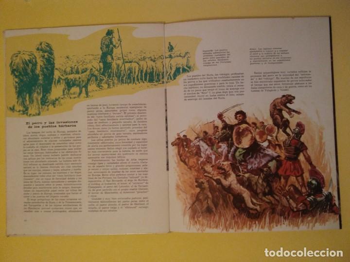 Libros antiguos: El perro nuestro amigo-Año1972-PLAZA JANES-editorial - Foto 27 - 147540694