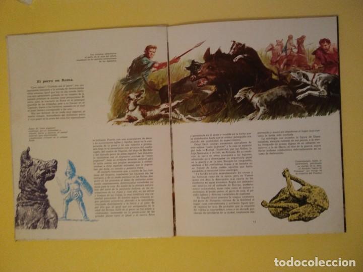 Libros antiguos: El perro nuestro amigo-Año1972-PLAZA JANES-editorial - Foto 28 - 147540694