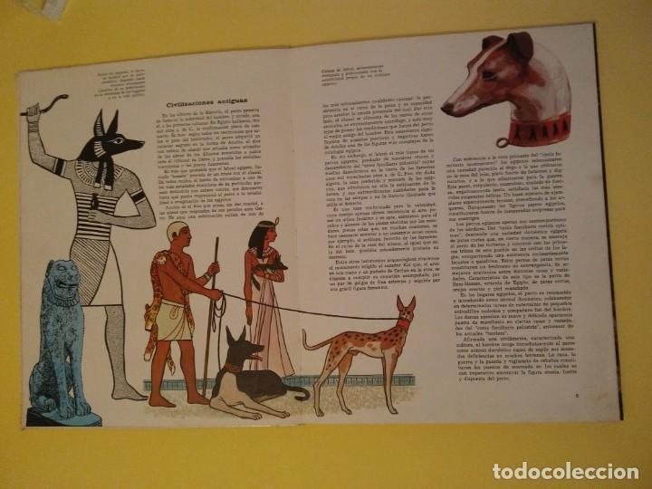 Libros antiguos: El perro nuestro amigo-Año1972-PLAZA JANES-editorial - Foto 30 - 147540694