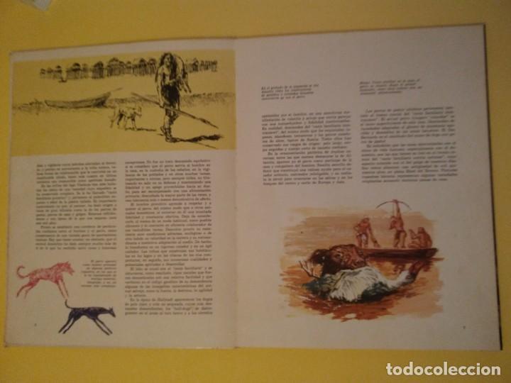 Libros antiguos: El perro nuestro amigo-Año1972-PLAZA JANES-editorial - Foto 31 - 147540694