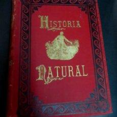 Libros antiguos: HISTORIA NATURAL LA CREACIÓN TOMO VI-VII INSECTOS DR. A.E. BREHM MONTANER Y SIMÓN AÑO 1881 SIGLO XIX. Lote 150764742