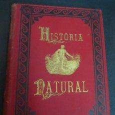 Libros antiguos: HISTORIA NATURAL LA CREACIÓN TOMO VIII BOTÓNICA DR. A.E. BREHM MONTANER Y SIMÓN AÑO 1883. Lote 150766010