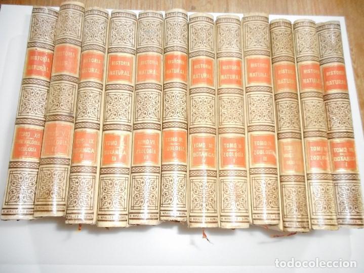 VV.AA HISTORIA NATURAL (12 TOMOS SUELTOS) Y92475 (Libros Antiguos, Raros y Curiosos - Ciencias, Manuales y Oficios - Otros)