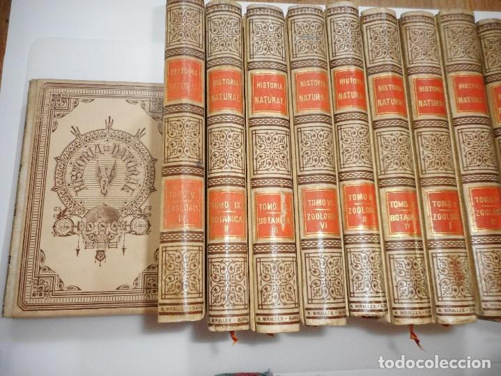 Libros antiguos: VV.AA Historia Natural (12 Tomos sueltos) Y92475 - Foto 2 - 150950838