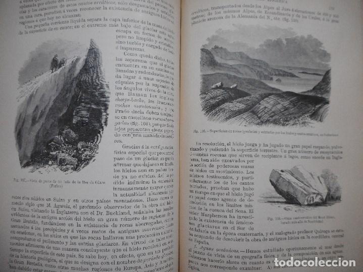 Libros antiguos: VV.AA Historia Natural (12 Tomos sueltos) Y92475 - Foto 3 - 150950838
