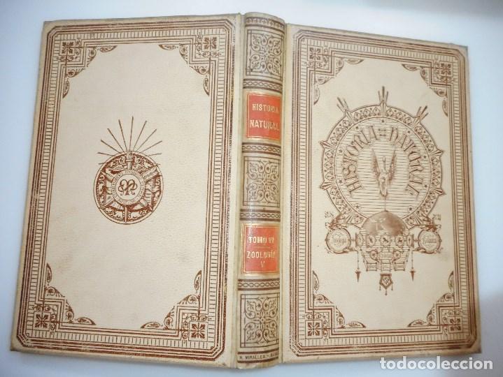 Libros antiguos: VV.AA Historia Natural (12 Tomos sueltos) Y92475 - Foto 6 - 150950838